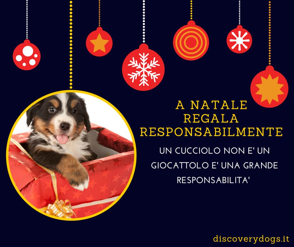 DiscoverydogsCampagnaSensibilizzazioneNatale