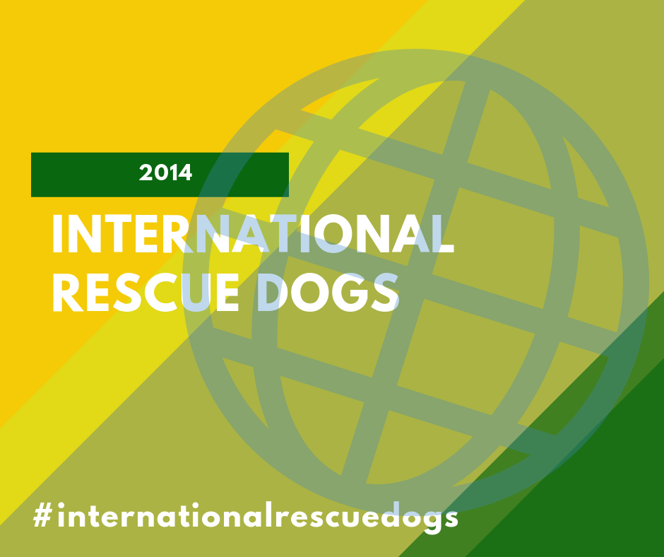 International Rescue Dogs