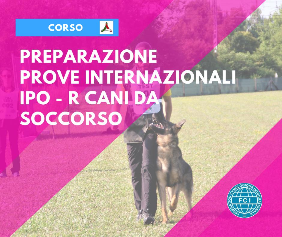 IPO-R International Test - Preparation Course