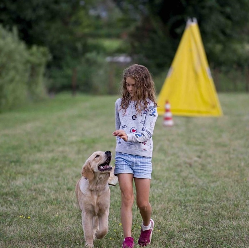 Corsi Personalizzati Addestramento Cani